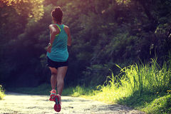 Runner athlete running on forest trail Stock Photos