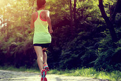 Runner athlete running on forest trail Royalty Free Stock Photo