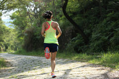 Runner athlete running on forest trail Stock Images