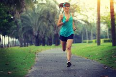 Runner athlete running at tropical park stock image