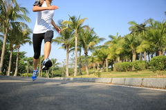Runner athlete running at tropical park Royalty Free Stock Photo