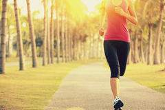 Runner athlete running at tropical park. woman fitness sunrise jogging workout Royalty Free Stock Photo