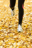 Runner on autumn season Royalty Free Stock Photos