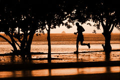 Runner on the beach. Running man on the beach at sunset Royalty Free Stock Photo