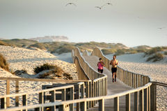 Runner on the beach. Man and woman running over a bridge on the beach of Praia de Barra (Aveiro, Portugal) in the evening light with seagulls in the stock photo