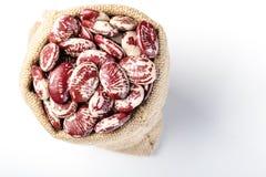 Runner bean Stock Images