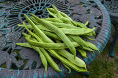 Runner beans on table Stock Photography