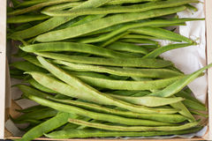 Runner beans in a wooden basket royalty free stock photos