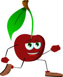 Runner Cherry Stock Image
