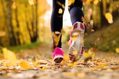 Runner. Close up of feet of a runner running in autumn leaves training exercise stock photos