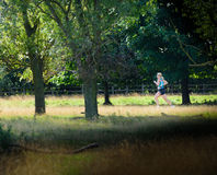 Runner. Contestant in the Vitruvian triathlon (comprising a 1900m swim, a 85 km bike ride and a 21 km run) at Rutland Water on Saturday 29 August 2015 royalty free stock photography