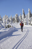 Runner-country skiing in the winter landscape. Royalty Free Stock Images