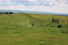 Runner countryside england. A lone female runner jogging along the South Downs Way in the English countryside near Lewes, Sussex Royalty Free Stock Photography