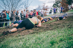 Runner crawling under barbed wire in a test of extreme obstacle race Royalty Free Stock Image