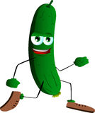 Runner cucumber or pickle Royalty Free Stock Image