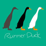 runner duck vector illustration style Flat side Royalty Free Stock Photos
