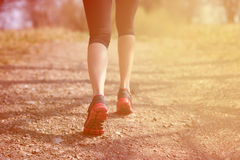 Runner feet running on road closeup on shoe. woman fitness sunrise jog workout welness concept. Runner feet running on road closeup on shoe. woman, fitness Royalty Free Stock Image