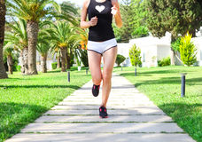 Runner feet running on road in the park. Woman fitness sunrise j Royalty Free Stock Photo