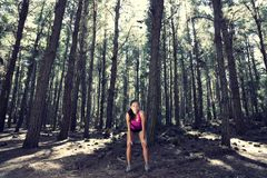 Runner in Forest royalty free stock photos