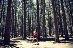 Runner in Forest Royalty Free Stock Image