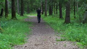 Runner on forest trail slowly run away. In summer day stock footage