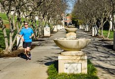 Runner at Fountain Row at Elmwood Park, Roanoke, Virginia, USA - 2. Roanoke, Virginia USA – Nov. 17th: A male runner out for a morning run at fountain row stock images