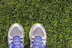 Runner on the grass Royalty Free Stock Photo