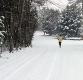 Runner jogging in snow Royalty Free Stock Photos