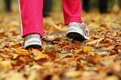 Runner legs running shoes. Woman jogging in autumn park. Runner legs and running shoes. Sporty woman jogging walking outdoors in autumn park on forest path, fall Royalty Free Stock Photo