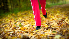 Runner legs running shoes. Woman jogging in autumn park Royalty Free Stock Image