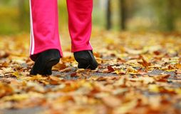 Runner legs running shoes. Woman jogging in autumn park. Runner legs and running shoes. Sporty woman jogging walking outdoors in autumn park on forest path, fall Stock Photos
