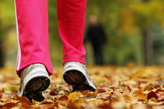 Runner legs running shoes. Woman jogging in autumn park. Runner legs and running shoes. Sporty woman jogging walking outdoors in autumn park on forest path, fall Royalty Free Stock Photos
