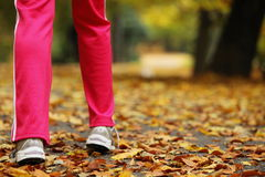 Runner legs running shoes. Woman jogging in autumn park Royalty Free Stock Images