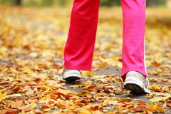 Runner legs running shoes. Woman jogging in autumn park. Runner legs and running shoes. Sporty woman jogging walking outdoors in autumn park on forest path, fall Royalty Free Stock Photography