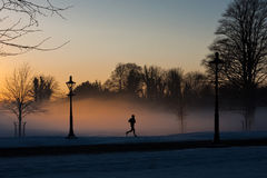 A Runner in the misty Phoenix park. Dublin, Ireland Royalty Free Stock Photos