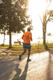 Runner in the morning Stock Photography