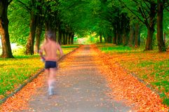 Runner in motion in a beautiful park. Runner in motion in a beautiful autumn park stock image