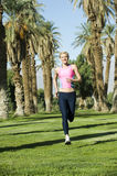 Runner with Palm Trees Stock Photo