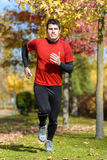 Runner in park Royalty Free Stock Photography