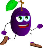 Runner plum Royalty Free Stock Image