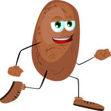 Runner potato Royalty Free Stock Photography