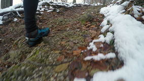 Runner POV in winter forest trail stock footage