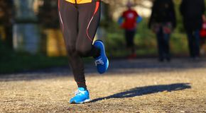 Runner run  in the Park during training for the marathon Royalty Free Stock Image
