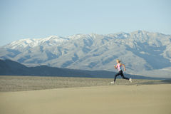 Runner On Sand Dunes Royalty Free Stock Photo