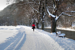 Runner on winter road Stock Photography