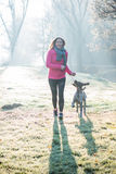 Runner woman and her cute German pointer dog running together Stock Image