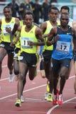 Runners at 1500 metres race. In Josef Odlozil memorial meeting held in Prague on 8.6.2009 Royalty Free Stock Images