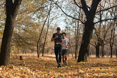 Runners in the autumn forest Stock Images