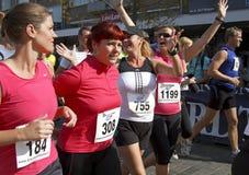 Runners celebrate the 6th Drechtstedenloop Stock Photos