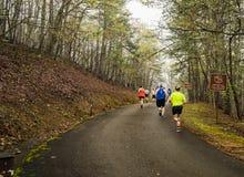 Runners Climbing Roanoke Mountain
